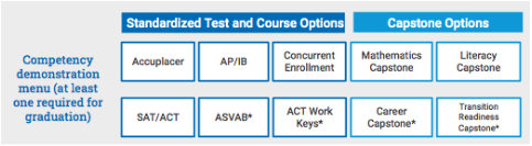 Competency Demonstration Options